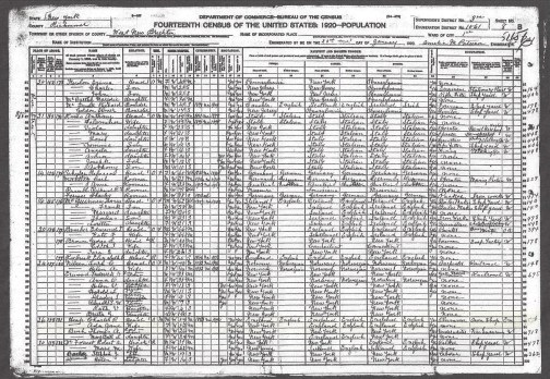 1920 US Census Castleton, Richmond Co. N.Y.