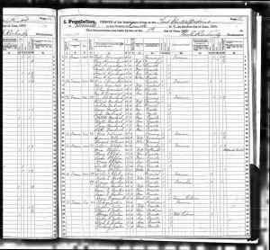 1875 New York State Census