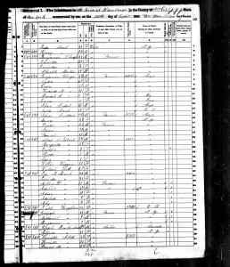 150 US Census Hamburg, Erie county New York