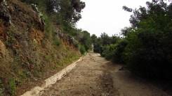 TRAIL PARK GÜELL (17)