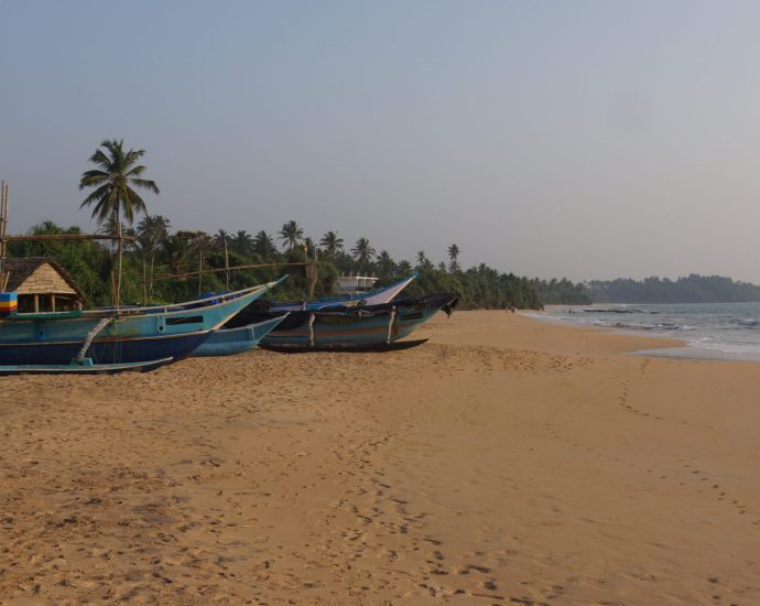 Pogled na plažu s koje se puštaju kornjače u more