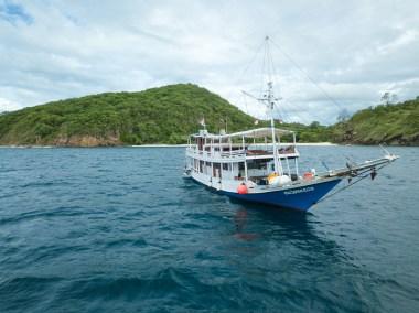 Sewa Kapal Cajoma Eco