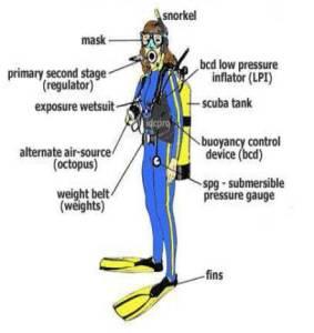 Diving Equipment Dive Trip