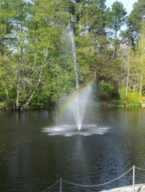 Fountain in the Botanical Gardens with a rainbow through it :)