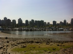 View of the city from Stanley Park (the tide was out)