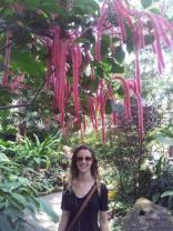 Pretty tree in the Bio-Dome