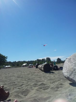 Another view of the kite from afar