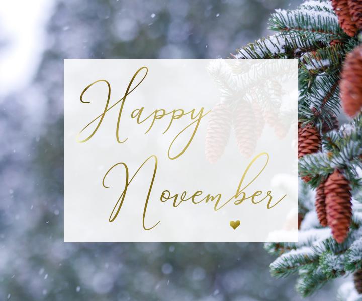 hold steady, energy update november 2020, wellness news, ottawa healer, canada healer