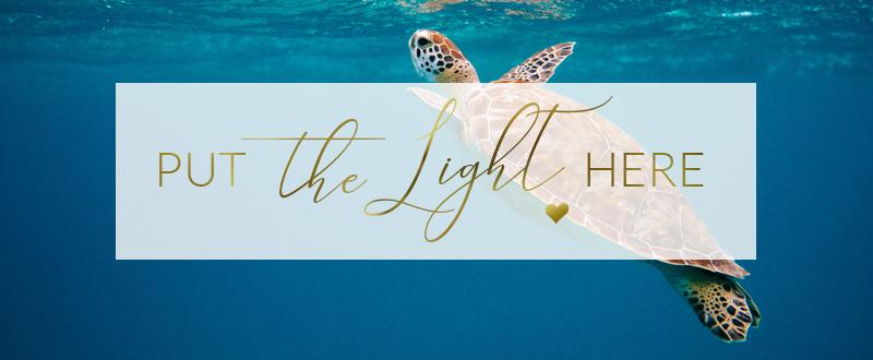 put the light here, ottawa healing, ontario healing, energy healing canada, energy update july 2021