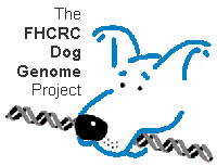 dog genome project Kennel club charitable trust has granted a further £25000 to give a dog a  genome,  funding to canine genetic research project 'give a dog a genome .