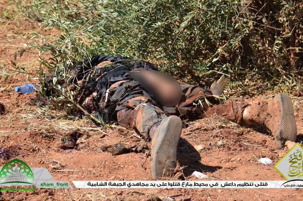 Ubijeni IDIS-ovi borci u ofanzivi na sjeveru Sirije