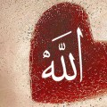 Ljubav prema Allahu