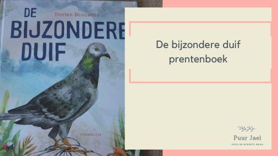De bijzondere duif – prentenboek met wat extra's