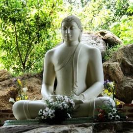buddha-1790619_960_720