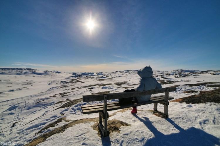 【北緯69度】格陵蘭Greenland.伊盧利薩特雪地健行(Ilulissat Hiking)