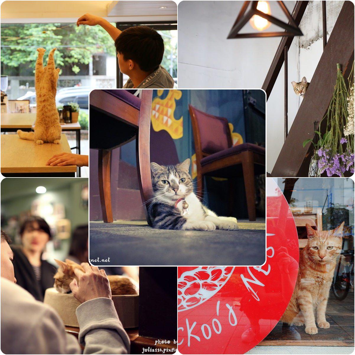 【貓咪咖啡特輯】貓奴注意!大台北地區貓咪咖啡Cat Cafe精選♥