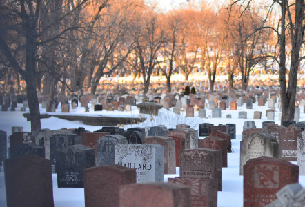 Snow covered graveyard