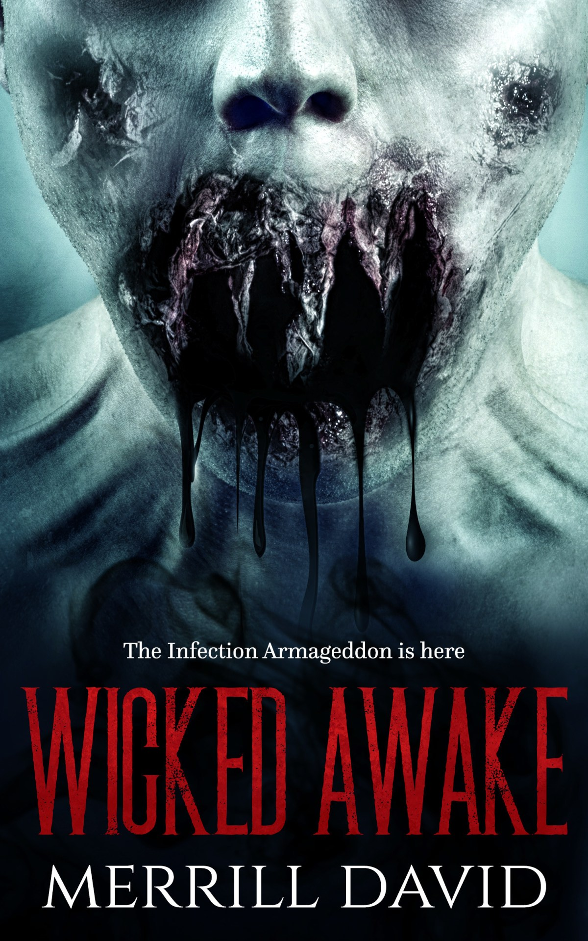 Wicked Awake book Cover by Merril David