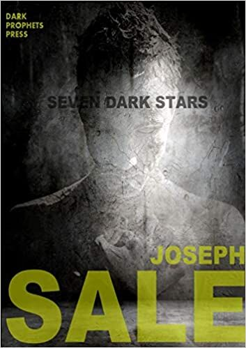 Seven Dark Stairs book cover