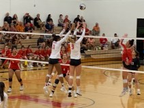 https://pvhs.pvpusd.net/apps/pages/athletics-volleyball-girls