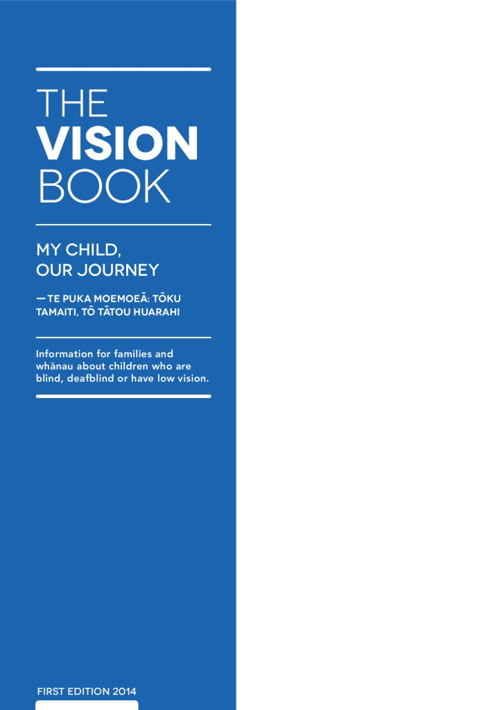 thumbnail of The-Vision-Booklet-min