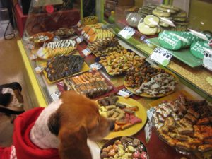 Bakery for dogs and cats at PVPE