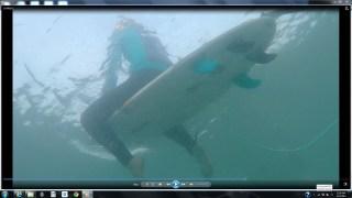 surf_1-13-15