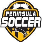 Soccer Logos 2015.2016