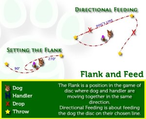 flanknfeed2010