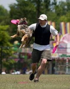 Flip to Dog Catch