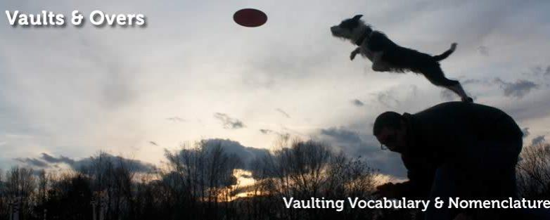 Vaulting Vocabulary and Nomenclature