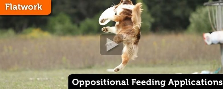 Oppositional Feeding for a Distance Flip
