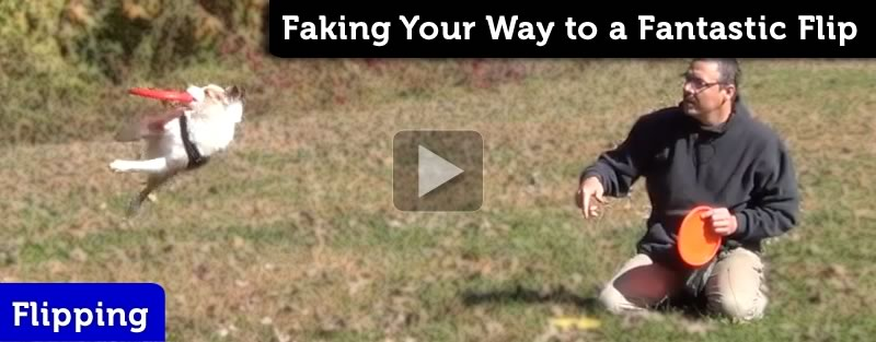 Are You Flippin' Kidding Me? Faking Your Way to a Flip