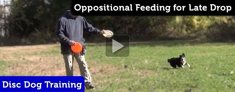 Oppositional Feeding for a Late Drop