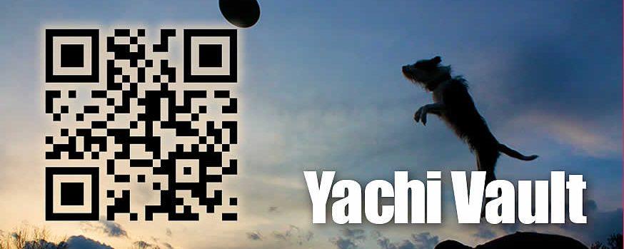 Yachi Vault