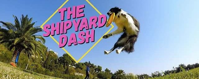 The Shipyard Dash