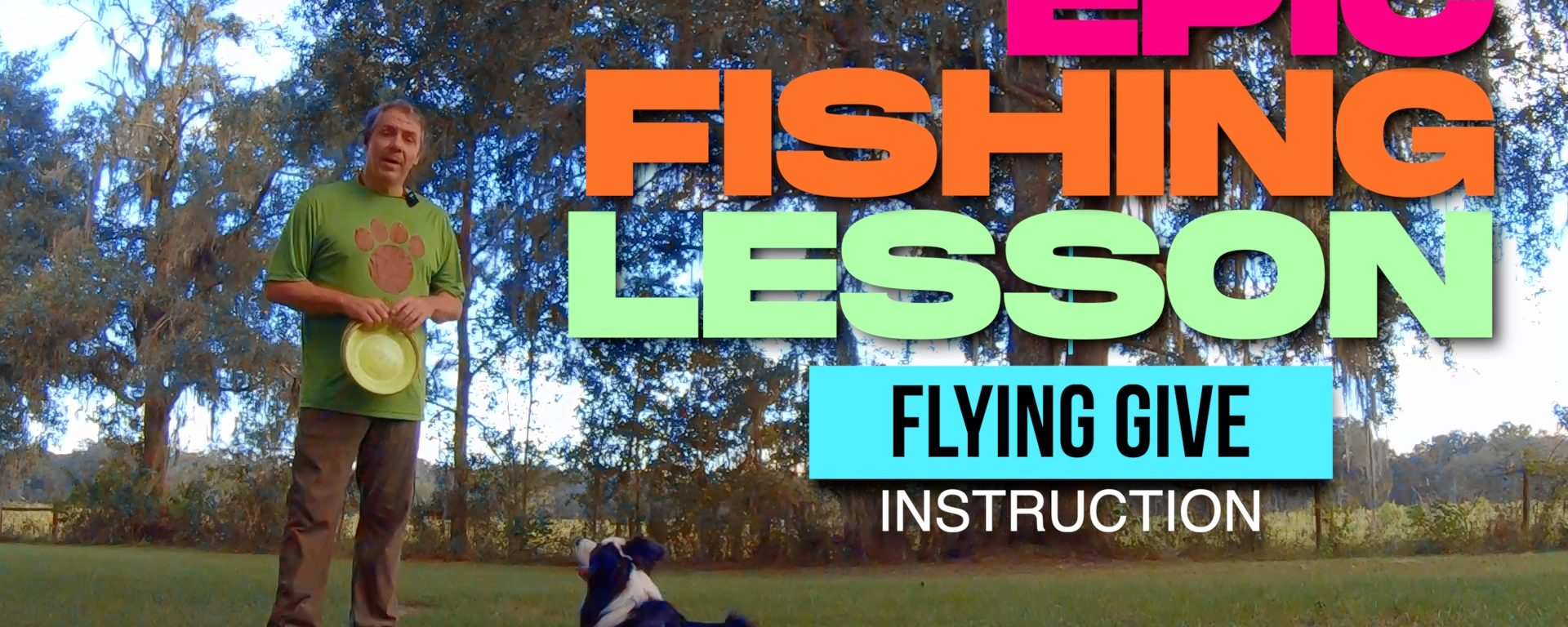Teaching a Flying Give to a Disc Dog with Classical Conditioning
