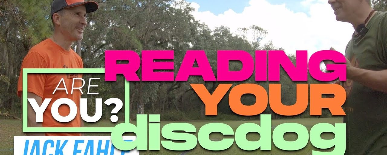 Are You Reading Your Disc Dog?