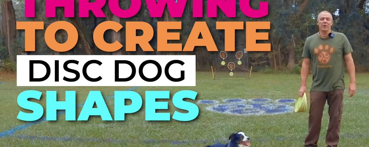 Throwing to Create Disc Dog Shapes