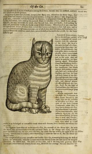 A new copy on H5r of Topsell's 1658 The History of Four-Footed Beasts and Serpents, image via archive.org.