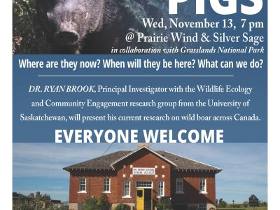 Wild Pigs in Sask with Dr. Ryan Brook Nov 13, 2019 at PWSS
