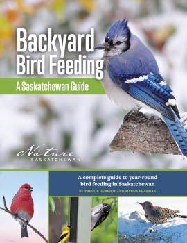 Backyard Birdfeeding