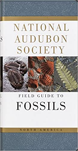 National Audubon Society Fieldguide to Fossils North America