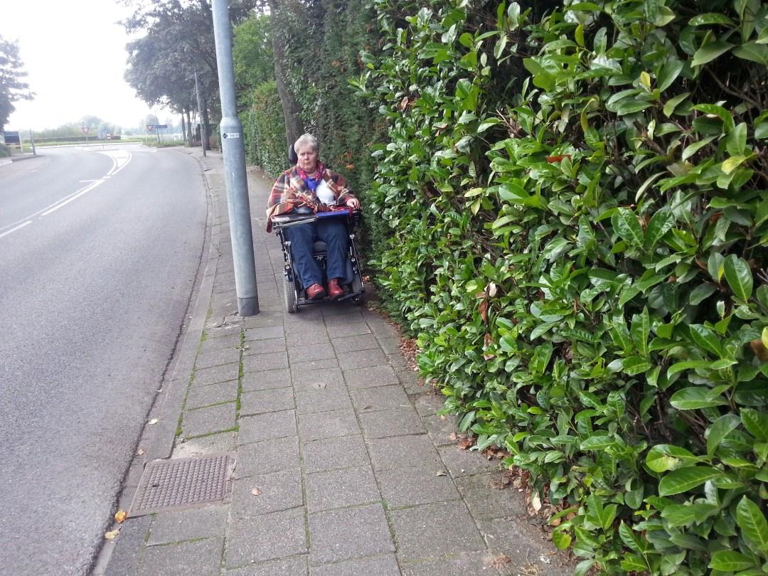 Afbeelding van een persoon in een rolstoel welke last heeft van overhangend groen.