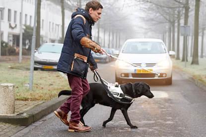 Afbeelding van Leroy de Bock met zijn blindengeleidehond.