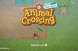 Test Animal Crossing New Horizons Nintendo Switch (51)