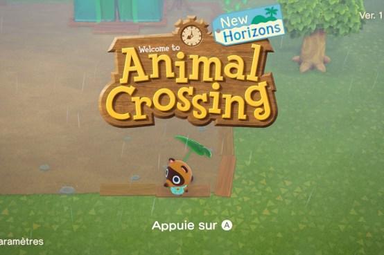 Test Animal Crossing New Horizons Nintendo Switch (51)