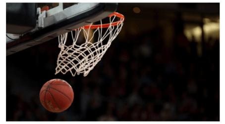 Basket - PXR Italy