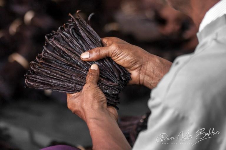 Vanilla of Antalaha