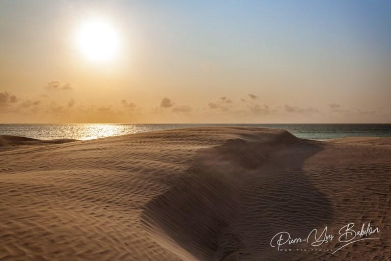 Le soleil brille sur les dunes